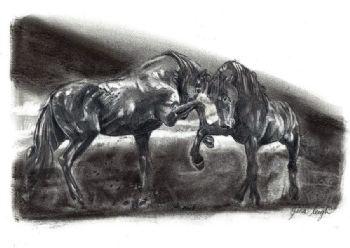 Native Wild Horses Print